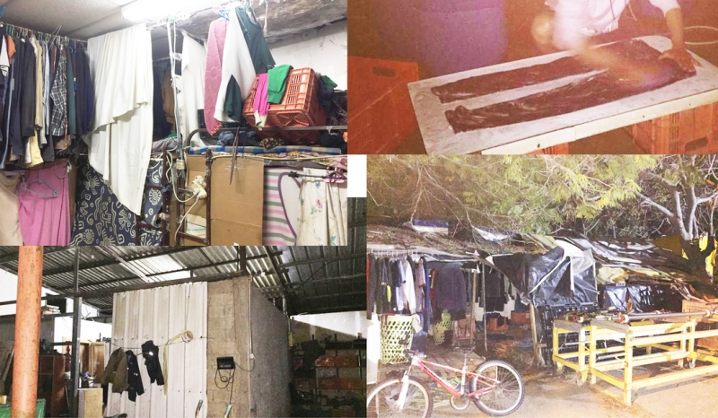 Five years in cramped squalor, misery and neglect