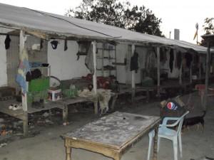 מגורי תאילנדים 6