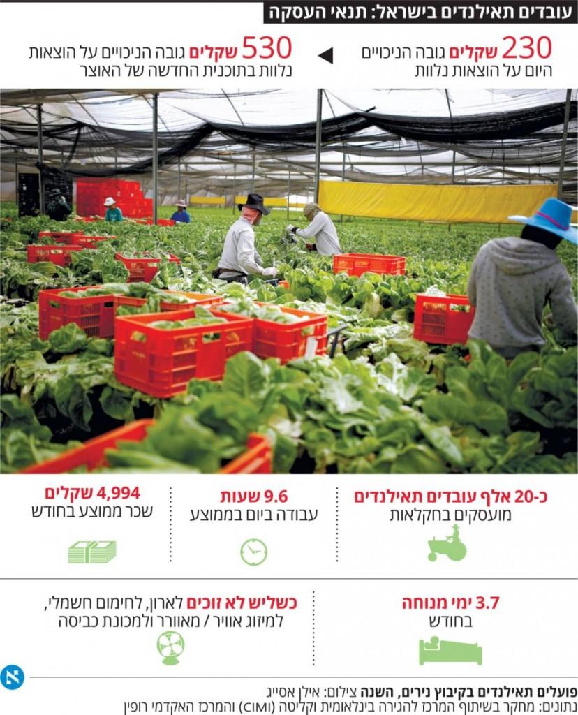 כתבת הארץ על הגדלת הניכויים לעובדי חקלאות 5.11.2015 - תמונת רקע